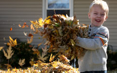 boy carrying fall leaves