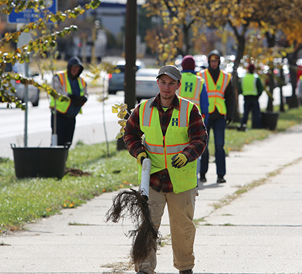 Hennepin County forester carrying a tree down a sidewalk during a tree planting event