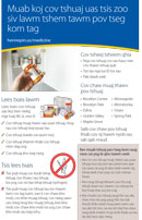 Hmong: Medicine Disposal Program half-page flyer